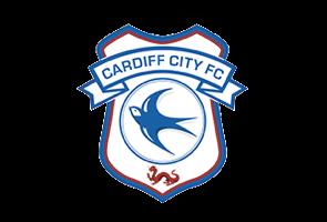 Cardiff City 295x200